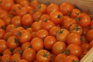 tomates en caja de madera foto