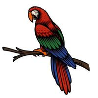 A colorful vector illustration of a parrot Ara