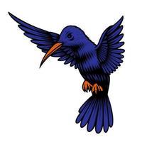 una ilustración vectorial de un colibrí