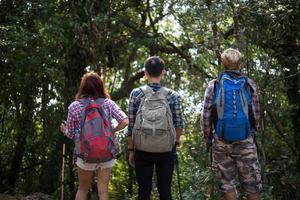 Close-up de amigos excursionistas de pie con mochilas en el bosque desde atrás
