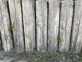 Fence made out of wood logs