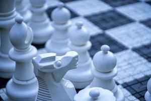 ajedrez de jardín grande en un césped foto