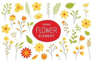 Flowers and leaves in spring season. Simple design elements with spring flowers set.