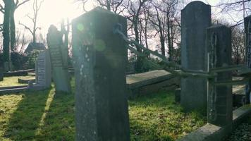 Gravestones on a cemetery when the sun is shining