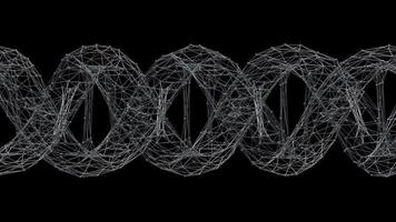 filo di dna futuristico wireframe. loop video.
