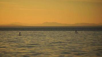 Siluetas de dos surfistas de stand up paddle durante la puesta de sol