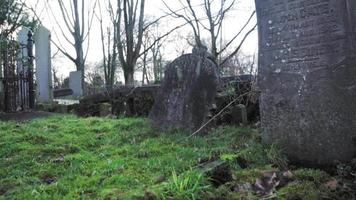 velhas lápides cinzentas em um cemitério