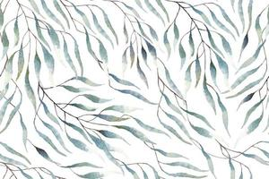 Pattern of eucalyptus leaves drawn with watercolor vector