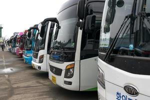 Fila de autobuses turísticos en gangwon-do, Corea
