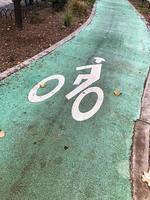carril bici verde en el parque foto