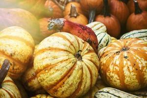Close up of pumpkins in a market
