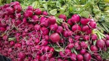 Pink beets for sale photo
