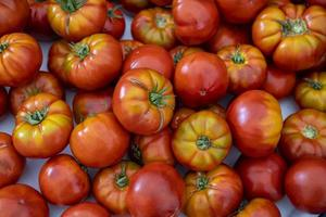 Close up of organic tomatoes for sale in the market