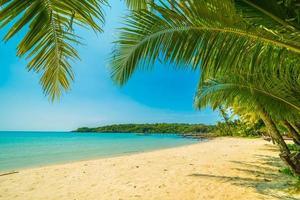 Beautiful tropical beach photo