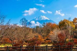 Mt. Fuji in Japan in autumn