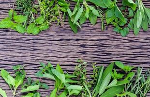 Fresh green herbs on wooden rustic background photo