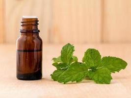 Mint essential oil photo