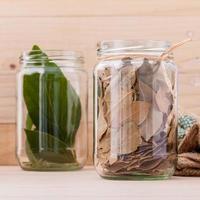hojas de laurel frescas y secas en frascos foto