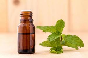 Bottle of mint essential oil photo