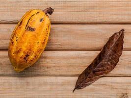 Ripe cocoa fruit