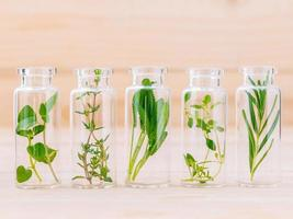 hierbas en frascos de vidrio foto