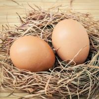 Brown eggs in a nest photo