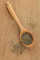 Dried rosemary leaves photo