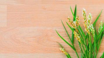 Flowers on wood photo