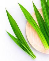 Pandan leaves on a wooden plate photo