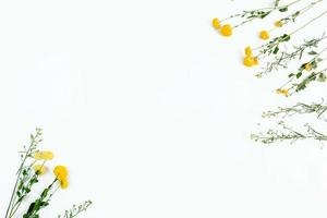 White background with pretty yellow flower frame