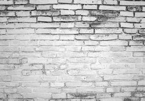 pared de ladrillo de textura blanca y gris foto