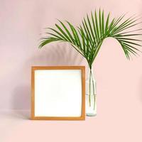 marco en blanco con planta sobre fondo rosa