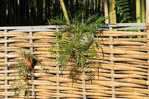 Bamboo fence with hanging flower baskets photo