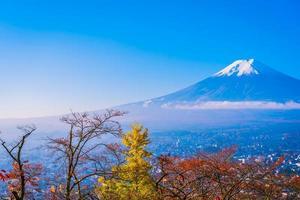 Mt. Fuji in Japan in autumn