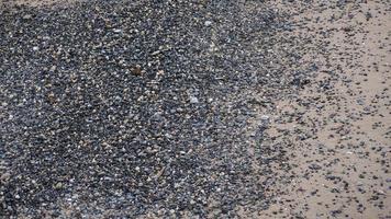 playa en la ciudad de nueva york con arena y guijarros foto