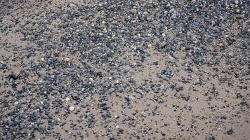 Guijarros de playa de arena en Nueva York foto