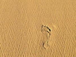 Footprint on a sandy beach photo