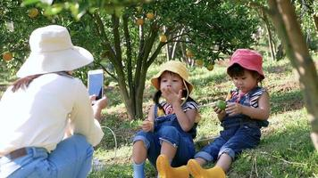 Mother using a smartphone to take pictures of her daughters sitting at orange garden.