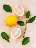 limón y hojas foto
