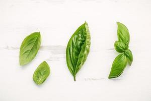 hojas de albahaca verde dulce fresca foto