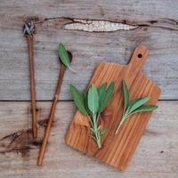 Branch of fresh sage and dried tied sage set up on old wooden table photo