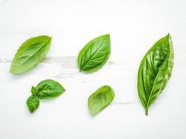 hojas de albahaca verde fresca foto