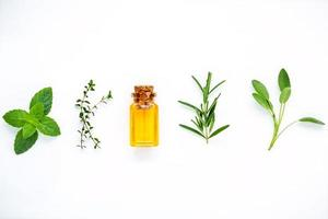 Bottle of essential oil with fresh herbs