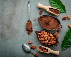 Cocoa powder and cacao beans on a gray background
