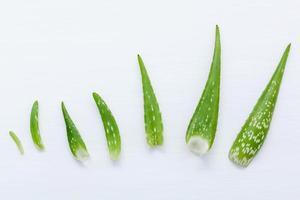Aloe vera leaves photo