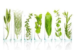 viles de hierbas aromáticas frescas foto