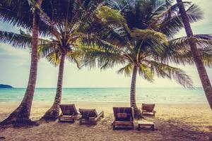 playa tropical con palmeras foto