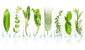 Close-up de botellas de aceites esenciales con hierbas frescas foto