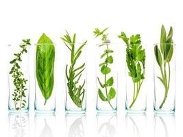 botellas de hierbas para aceites esenciales foto