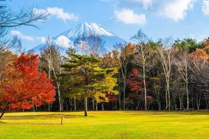 Landscape around Mt. Fuji in Japan in autumn